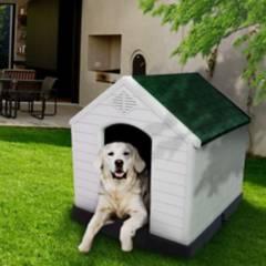 ANIMAL PLANET - Casa para Perro Grande