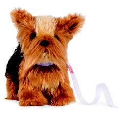 OUR GENERATION - Minidog Yorkshire