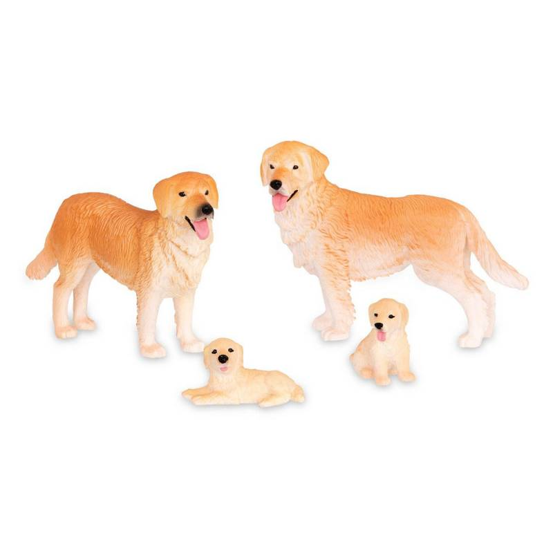 TERRA - Familia Perro