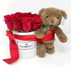 FLORALIA - Caja de Rosas + Peluche