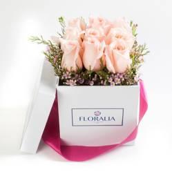 FLORALIA - Caja 9 rosas Rosadas
