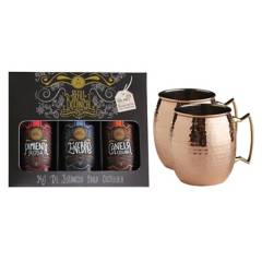 GIN FEVER - Box Secret Gin Fever + 2 Copper Mug
