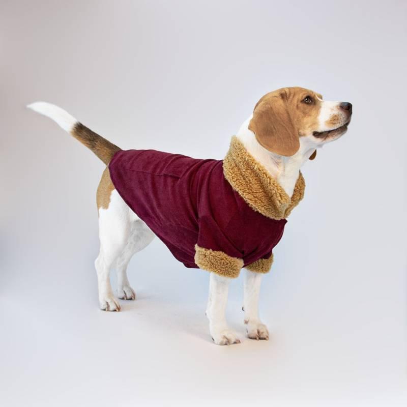 NADRA - Abrigo Pet Burgundy Pana