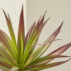 CRATE & BARREL - Rama de Suculenta Yucca Roja Artificial