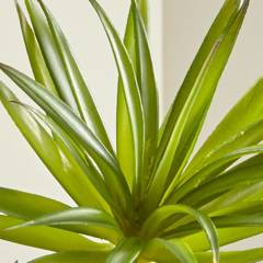 "CRATE & BARREL - Rama de Suculenta ""Yucca Green"" Artificial"