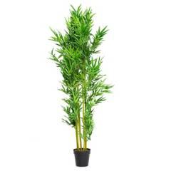 MICA - Planta Bamboo 180 cm