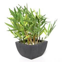 Planta Bamboo 35cm