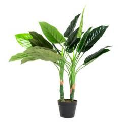 MICA - Planta Filodendro 100 cm