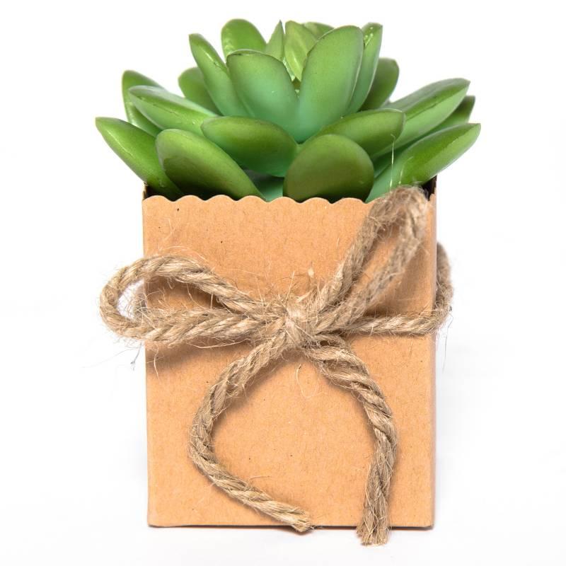 MICA - Planta Suculenta 9 cm