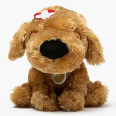 YAMP - Peluche Poodle