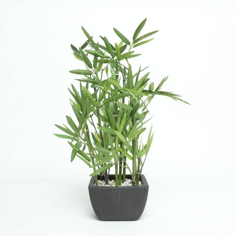 MICA - Planta Bambo 46 cm